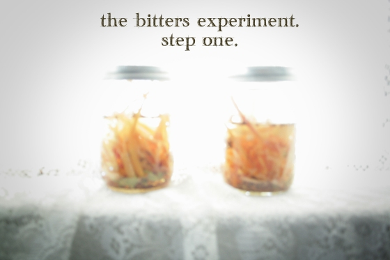 bitters experiement